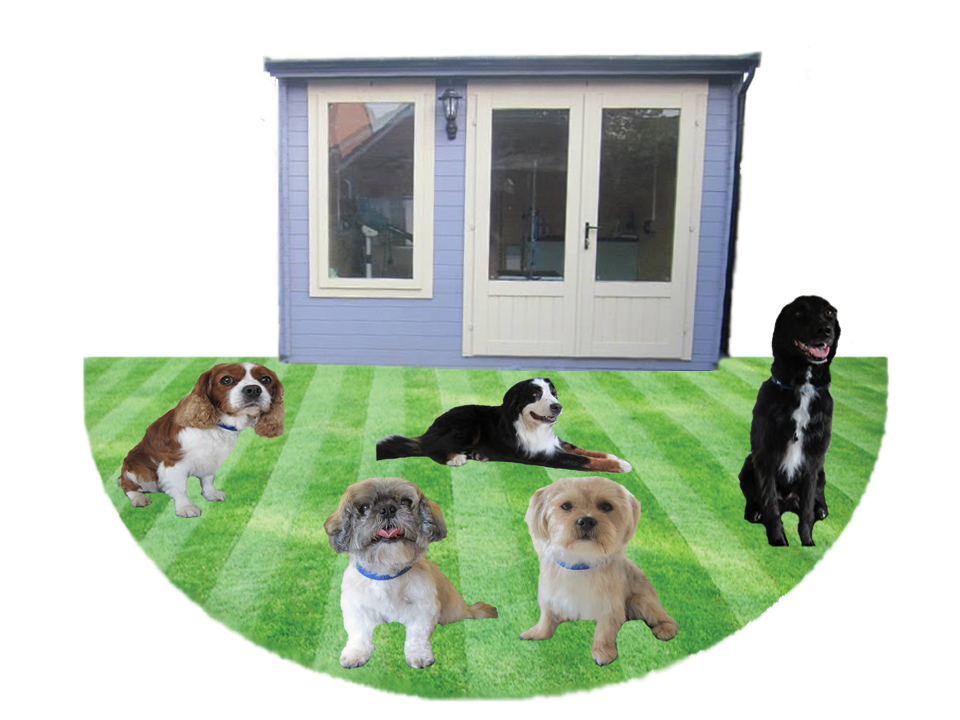 Dog Home Saxilby